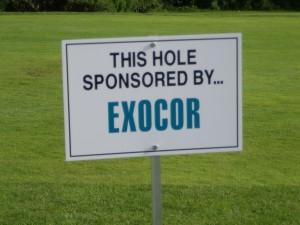 z hole exocor